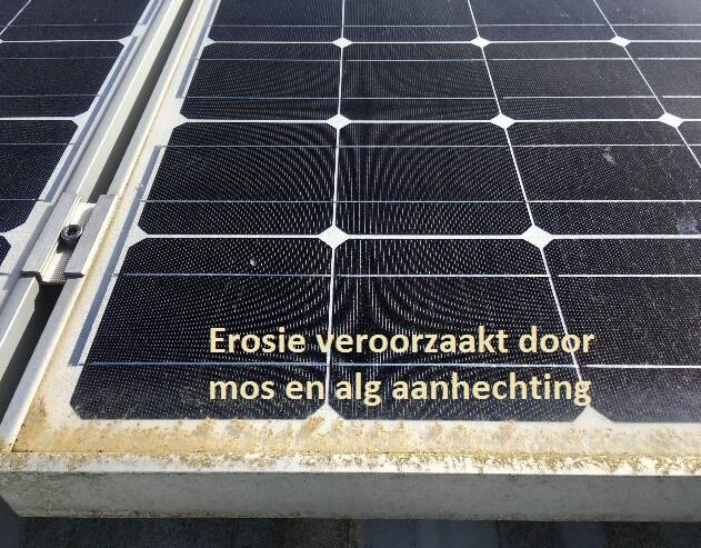 Zelf zonnepanelen schoonmaken